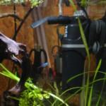 Торт подушечка
